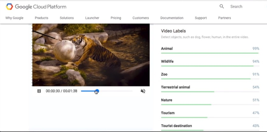 artificial intelligence services google video intelligence
